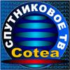 Cotea